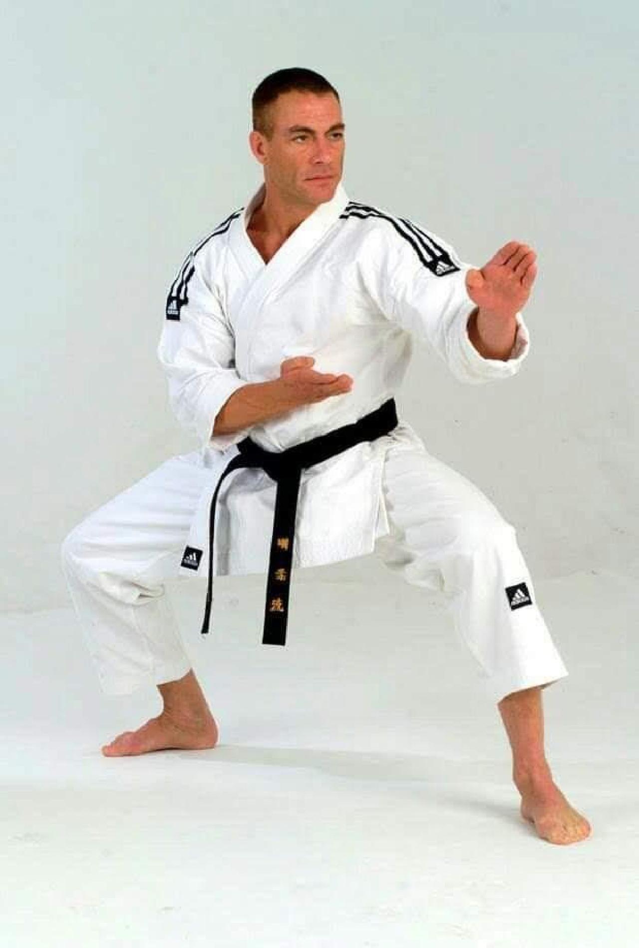 Um grande mestre do karatê Van Damme